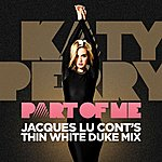 Katy Perry Part Of Me (Jaques Lu Cont's Thin White Duke Mix)