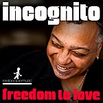 Incognito Freedom To Love (Atjazz & Roze Remixes)