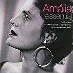 Amália Rodrigues Amalia Rodrigues: Amalia - Essential