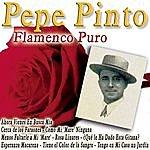 Pepe Pinto Flamenco Puro
