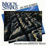 Magical Strings On The Burren
