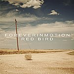 Foreverinmotion Red Bird - Single