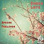 Chocolate Spring Feelings