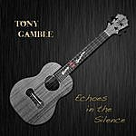 Tony Gamble Echoes In The Silence