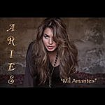 Aries MIL Amantes