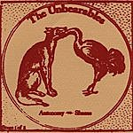 The Unbearables Autonomy Vs. Shame
