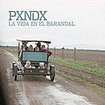 Panda La Vida En El Barandal