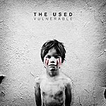 The Used Vulnerable