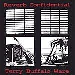 Terry 'Buffalo' Ware Reverb Confidential