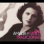 Amália Rodrigues Fados Tradicionais (1952-1955)