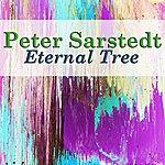 Peter Sarstedt Eternal Tree