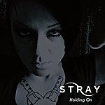 Stray Holding On