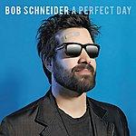 Bob Schneider A Perfect Day