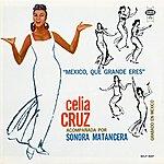 Celia Cruz México, Que Grande Eres