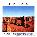 Trice A Walk In The Desert (Revisited)