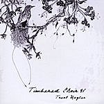 Trent Wagler Timbered Choir - Ep
