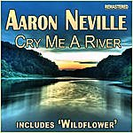 Aaron Neville Cry Me A River