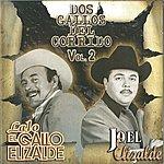 Lalo El Gallo Elizalde Dos Gallos Del Corrido