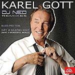 Karel Gott Karel Gott Vs. Dj Neo Remixes (Ep)