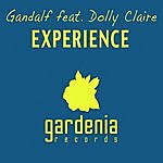 Gandalf Experience