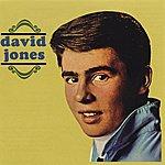 David Jones David Jones