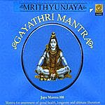 Prof.Thiagarajan & Sanskrit Scholars Mrytunjaya Gayathri Mantra
