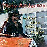 Terry Anderson What Else Can Go Right