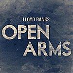 Lloyd Banks Open Arms - Single