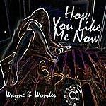 Wayne Wonder How You Like Me Now