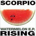Scorpio Rising Watermelon - Ep