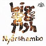 Big Fish Ensemble Nyårshambo