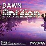 Dawn Antilion