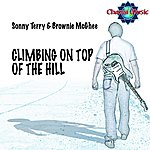 Sonny Terry Climbing On Top Of The Hill