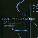 Brandon Fields Fields & Strings