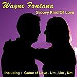 Wayne Fontana Groovy Kind Of Love