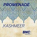 Promenade Kashmeer