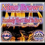 Nino Brown Somebody That I Used To Know (Feat. Kimbra & Ap)