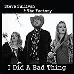 Steve Sullivan I Did A Bad Thing