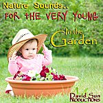 David Sun In The Garden (Nature Sounds For The Very Young)