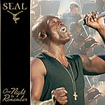 Seal One Night To Remember