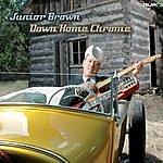 Junior Brown Down Home Chrome