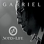 Gabriel Notes For Life