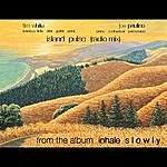 Tim White Island Pulse (Radio Mix)