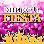Party Locos Por La Fiesta