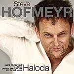 Steve Hofmeyr Haloda