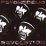 Julian Cope Psychedelic Revolution