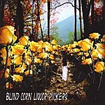 Blind Corn Liquor Pickers Appalachian Trail