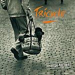 Tricycle Orange For Tea