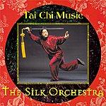 Silk Tai Chi Music
