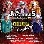 Los Jilgueros Del Arroyo Chihuahua Y Sus Cantares